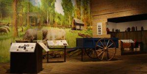 Buffalo History Museum Pioneer Gallery