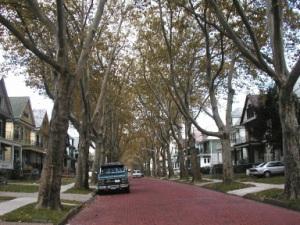 timon street